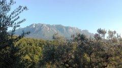 098.Panorama_Alburni.jpg